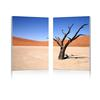 Desert Solitude Mounted Photography Print Diptych Multi