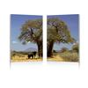 Tree of Life Mounted Photography Print Diptych Multi