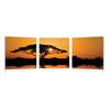 Savannah Sunset Mounted Photography Print Triptych Multi
