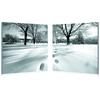 Telltale Trail Mounted Photography Print Diptych Black/White