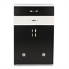 Heidi Black and White 2-tone Shoe Cabinet with Two Doors and Two Drawers Black/White
