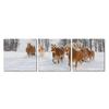 Horse Herd Mounted Photography Print Triptych Multi
