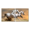 Galloping Grandeur Mounted Photography Print Diptych Multi