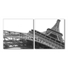 Sculptural Majesty Mounted Photography Print Diptych Black/White