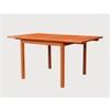 V1561 Outdoor Eucalyptus Rectangular  Dining Table