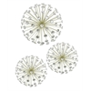 Jewel Starburst Wall Art S/3 - Champagne