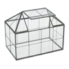 Metal & Glass Terrarium - Black