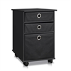 Econ  Organizer with Bins and Mobility Casters, Black