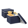 Non-Woven Fabric Heavy-Duty Storage Organizer, 2-Pack Dark Blue