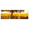 SENIC Africa Sunrise 3-Panel Canvas on Wood Frame, 60 x 20-in