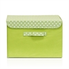 Non-Woven Fabric Soft Storage Organizer with Lid, Green