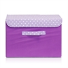 Non-Woven Fabric Soft Storage Organizer with Lid, Purple