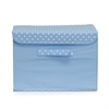 Non-Woven Fabric Soft Storage Organizer with Lid, Blue