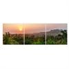 Seni Dawn Scenery 3-Panel MDF Framed Photography Triptych Print, 48 x 16-inch