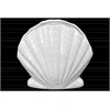 Ceramic Clam Seashell Sculpture Gloss Finish White