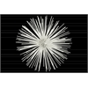 Metal Sea Urchin Ornamental Sculpture Decor LG Coated Finish White