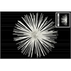 Metal Sea Urchin Ornamental Sculpture  Wall Decor LG Coated Finish White