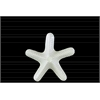 Ceramic Callous Sea Star Figurine SM Gloss Finish White