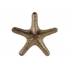 Ceramic Callous Sea Star Figurine LG Gloss Finish Bronze