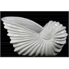 Ceramic Long Seashell Shaped Flower Pot Gloss Finish White