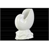 Porcelain Nautilus Seashell Sculpture on Coal Base Gloss Finish White