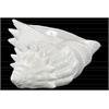 Ceramic Conch Seashell Sculpture Gloss Finish White