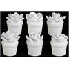 Ceramic Cactus Figurine on Pot Assortment of Six Gloss Finish White