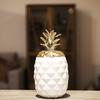 Ceramic Pineapple Canister with Gold Lid Coated Finish White