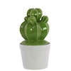 Ceramic Barrel Cactus Figurine on White Pot Gloss Finish Green