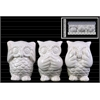 Ceramic Owl Figurine in PVC Packaging Gloss Finish White