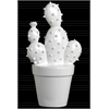 "Ceramic ""Prickly Pear"" Cactus Figurine on Pot Gloss Finish White"