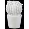 Ceramic Flowered Notocactus Figurine in Tapered Pot Gloss Finish White