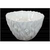 Ceramic Bowl with Tree Trunk Design Gloss Finish White