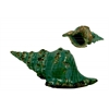 Ceramic Conch Seashell Figurine Distressed Gloss FInish Teal