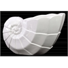 Ceramic Geometric Nautilus Seashell Flower Pot Gloss Finish White