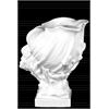 Ceramic Conch Seashell Sculpture on Coral Pedestal Gloss Finish White
