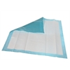 Extrasorbs Cloth-like Disposable DryPads, 70/CS