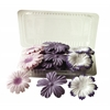 Blue Hills Studio Irene's Garden Box O'Blooms Flower Pack Purple/Plum