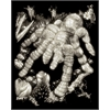 Royal & Langnickel Engraving Art Set Glow In The Dark Foil Tarantula