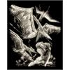 Royal & Langnickel Engraving Art Set Glow In The Dark Foil Pterodactyl