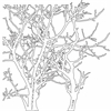"12"" x 12"" Design Template Branches"