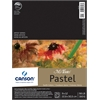 "Canson Mi-Teintes Artist Series 9"" x 12"" Fold Over Bound Pad Earth Tone"