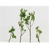 Architectural Model Foliage Tree Light Green 24-pack