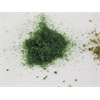 Architectural Model Turf Blended Grass Medium