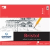 "Canson Foundation Series Foundation Series Vellum Bristol 14"" x 17"""
