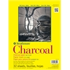 "Strathmore 300 Series 9"" x 12"" White Glue Bound Charcoal Pad"