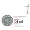 14 x 17 2-Ply Vellum Tape Bound Bristol Pad