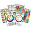 "Color Wheel Pocket Guide to Mixing Color 3"" x 5"" Color Mixing Guide"