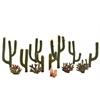 """Cactus Plants 1/2"""" - 2-1/2"""" 13-Pack"""