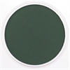 PanPastel Ultra Soft Artists' Painting Pastel Permanent Green Extra Dark